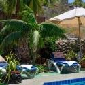 Unter Palmen am Swimmingpool