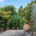 Draußendusche im subtropischen Garten