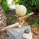 Detail im tropischen Garten